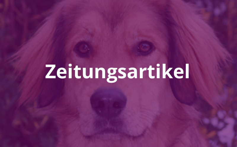 """Tagblatt: """"Der Hund der Blinden hilft"""""""